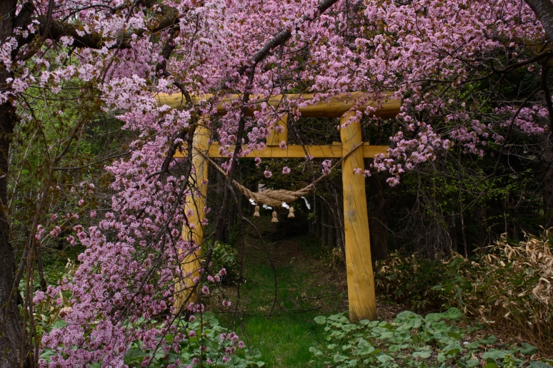 八幡丘神社